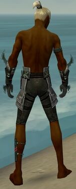 Assassin Luxon Armor M gray arms legs back.jpg