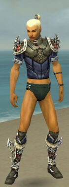 Assassin Norn Armor M gray chest feet front.jpg