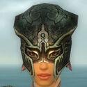 Warrior Luxon Armor F gray head front.jpg