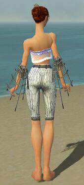 Elementalist Primeval Armor F gray arms legs back.jpg