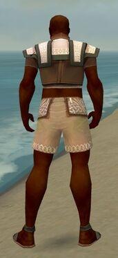 Monk Elite Woven Armor M gray chest feet back.jpg