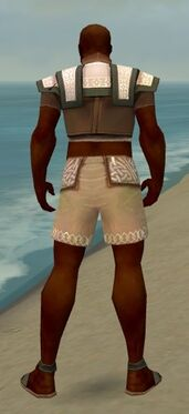 Monk Elite Woven Armor M gray chest feet back.jpg