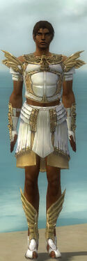 Paragon Ancient Armor M dyed front.jpg