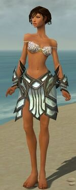Paragon Primeval Armor F gray arms legs front.jpg