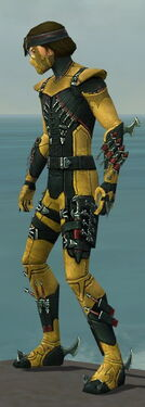 Assassin Seitung Armor M dyed side.jpg