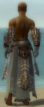Dervish Primeval Armor M gray arms legs back.jpg