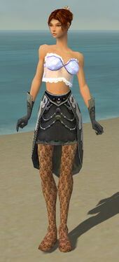 Elementalist Elite Flameforged Armor F gray arms legs front.jpg