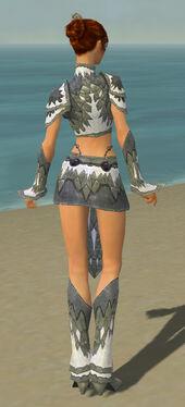 Elementalist Iceforged Armor F gray back.jpg