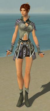 Elementalist Shing Jea Armor F gray front.jpg