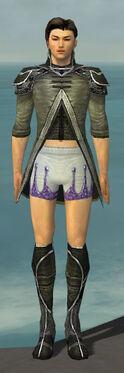 Elementalist Shing Jea Armor M gray chest feet front.jpg