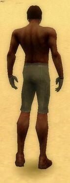 Mesmer Norn Armor M gray arms legs back.jpg