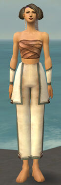 Monk Sacred Armor F gray arms legs front.jpg