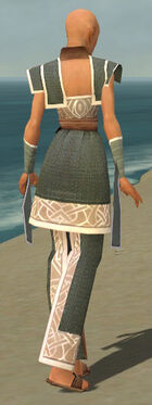 Monk Tyrian Armor F gray back.jpg