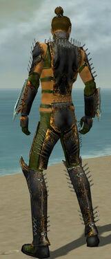 Assassin Exotic Armor M dyed back.jpg