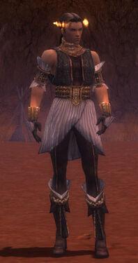 Elementalist Elite Sunspear Armor M gray front.jpg