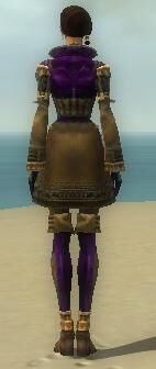 Mesmer Ancient Armor F dyed back.jpg