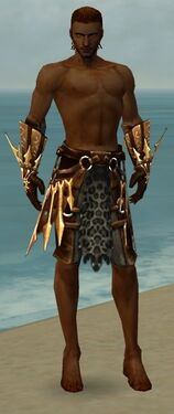 Ranger Elite Sunspear Armor M gray arms legs front.jpg