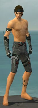 Assassin Canthan Armor M gray arms legs front.jpg