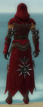 Dervish Elite Sunspear Armor M dyed back.jpg