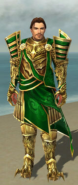 Dragonguard M dyed front.jpg