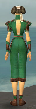 Monk Censor Armor F dyed back.jpg