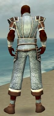 Monk Elite Judge Armor M dyed back.jpg