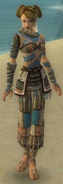 Monk Luxon Armor F gray front.jpg