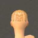 Monk Primeval Armor F dyed head back.jpg