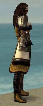 Ranger Norn Armor F dyed side alternate.jpg