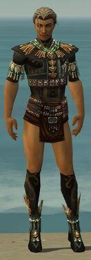 Ritualist Elite Luxon Armor M gray chest feet front.jpg