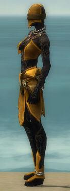 Ritualist Kurzick Armor F dyed side.jpg