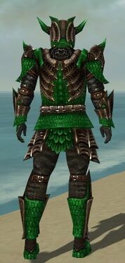 Warrior Elite Dragon Armor M dyed back.jpg