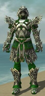 Warrior Silver Eagle Armor M dyed front.jpg