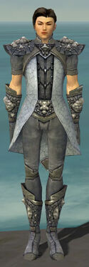 Elementalist Stoneforged Armor M gray front.jpg