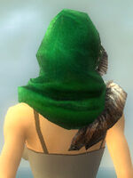 Festive Winter Hood dyed back.jpg