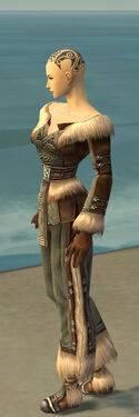 Monk Norn Armor F gray side.jpg
