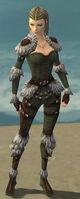 Ranger Elite Fur-Lined Armor F gray front.jpg