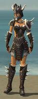 Warrior Norn Armor F gray front.jpg