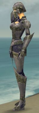 Warrior Platemail Armor F gray side.jpg