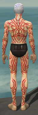 Necromancer Scar Pattern Armor M dyed back.jpg
