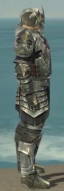 Warrior Elite Templar Armor M gray side.jpg