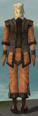 Elementalist Sunspear Armor M dyed back.jpg