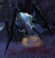 Mystic Mandragor.jpg