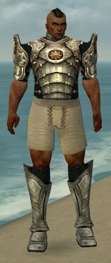 Warrior Sunspear Armor M gray chest feet front.jpg