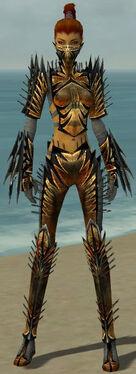 Assassin Elite Exotic Armor F gray front.jpg
