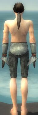 Elementalist Ancient Armor M gray arms legs back.jpg