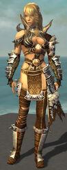 Jora Armor Brotherhood Front.jpg