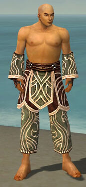 Monk Canthan Armor M gray arms legs front.jpg