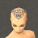 Monk Sunspear Armor F gray head front.jpg