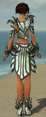 Paragon Primeval Armor F gray back.jpg